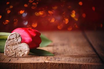 Hintergrund mit Liebe, Herz und Blume