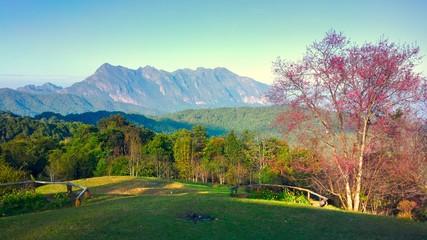 Doi luang chiang dao mountain at chiangmai thailand