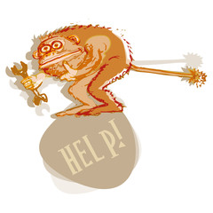 Monkey asks for help!