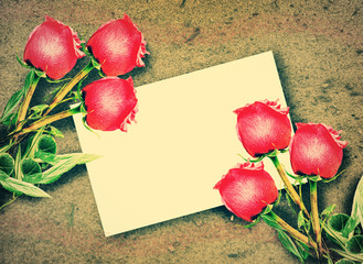 Red roses and Blank white gift card