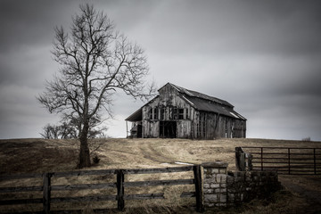 Deteriorating barn and tree on an overcast winter day