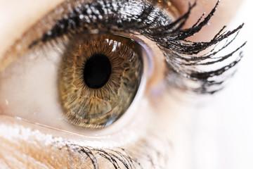 Woman eye macro shot.