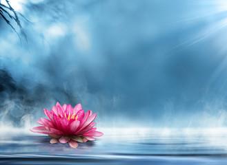 spirituality zen in peaceful scenery Fototapete