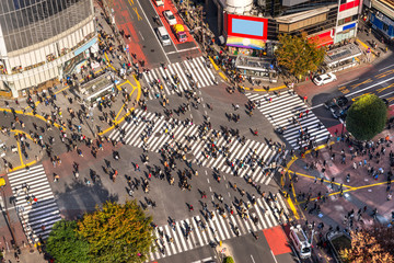Photo on textile frame Tokyo Shibuya Crossing, Tokyo, Japan.