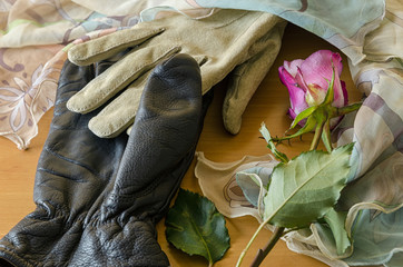 romantic scene with gloves and a rose
