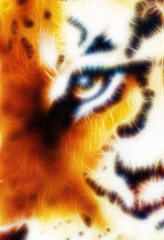 Tiger ornament  fractal background