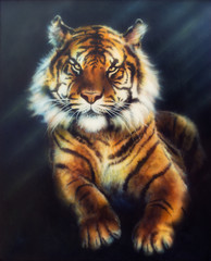 A beautiful oil painting on canvas of a mighty tiger looking up