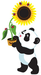 cartoon panda holding sunflower
