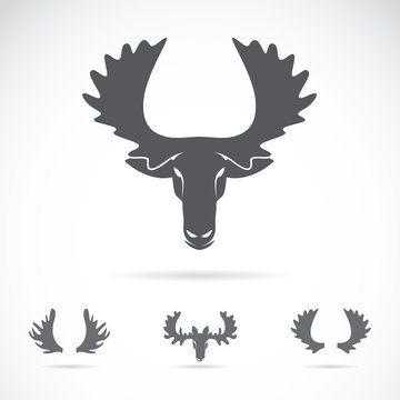 Vector of a moose head on a white background. Animals.