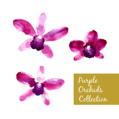 Collection of purple watercolor orchids