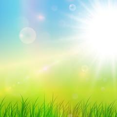 Sunny green background, vector illustration.