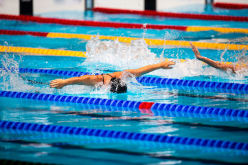 butterfly swimming race
