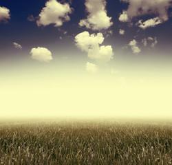 Grass under blue sky. Vintage style.