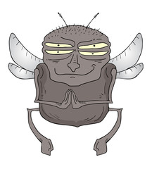 Funny fly