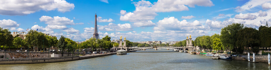 Eiffel Tower and bridge Alexandre III Wall mural