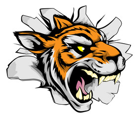 Tiger sports mascot breaking out