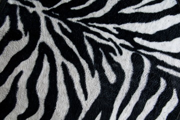 texture of print fabric stripes zebra for background