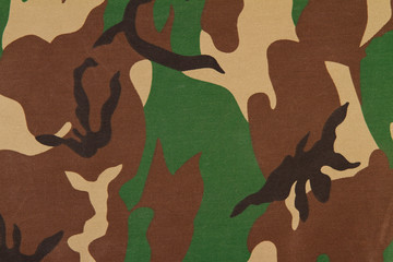 Camouflage pattern on cloth. Woodland style.