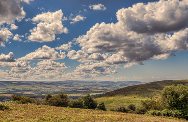 Quantock Hills Somerset