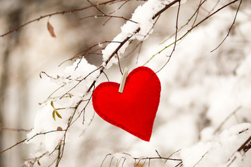 textile red heart on snowy tree brunch in winter