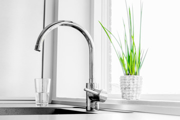 Faucet with a green plant