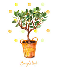 tree in pot with watercolor splashes.Vector illustration