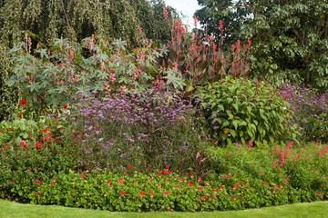 Garden landscape