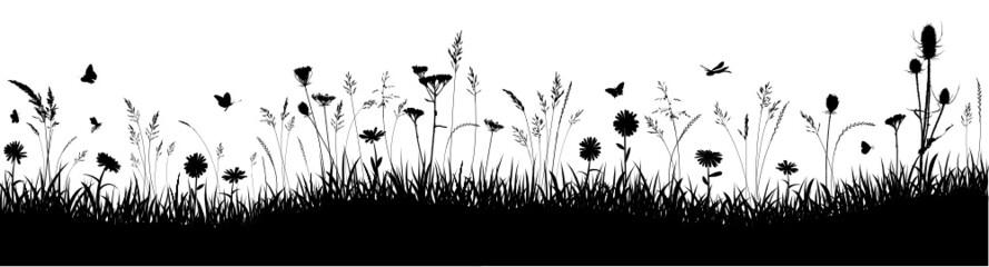 Fototapeta Herbstwiese Hintergrund