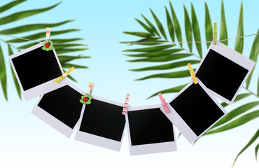 Photo cards hanging on clothesline on palm leaves background