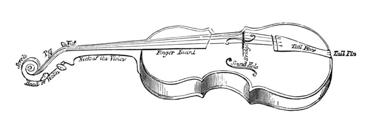 19th century engraving of the parts of a violin