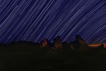 Star Trails Night Sky in Joshua Tree National Park