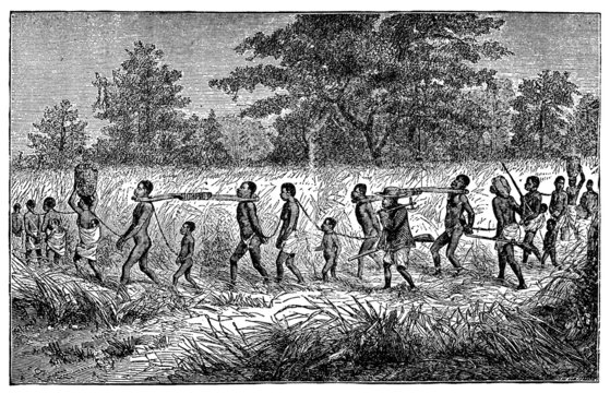Victorian engraving of indigenous African slaves and slavers