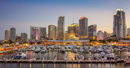Fotomurales - Miami city skyline panorama at twilight
