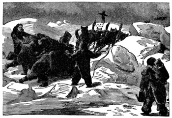Victorian engraving of anArctic dogsled team