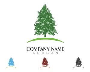 Cedar Logo Template V.5