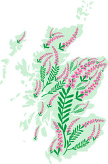 Vector image map of Scotland with heather flowers