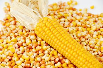 corn and tinned corn