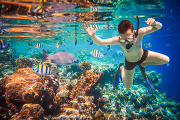 Wall Mural - Snorkeler Maldives Indian Ocean coral reef.