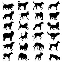Dog collection icon great for any use. Vector EPS10.