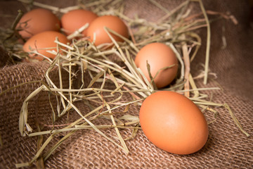 Organic brown eggs in rustic setting