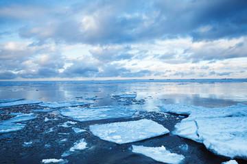 Winter coastal landscape with floating ice