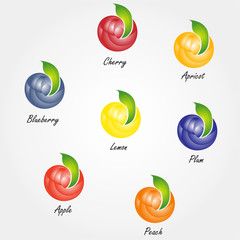 Vector icons various fruits