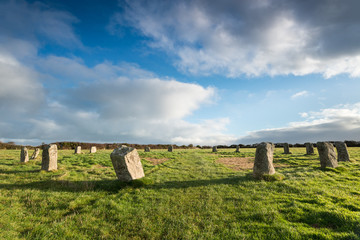 Wall Mural - The Merry Maidens Stone Circle