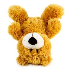 Toy teddy bear