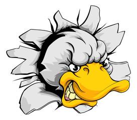 Duck sports mascot breakthrough