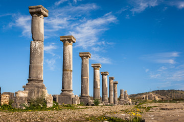 Colonade of Gordiano Palace. Volubilis