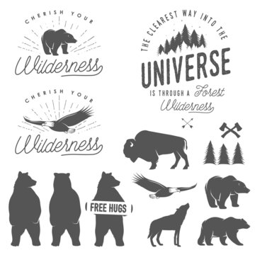 Set of wilderness quotes, silhouettes and design elements