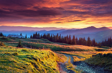 Wall Mural - Colorful summer sunrise in the mountains