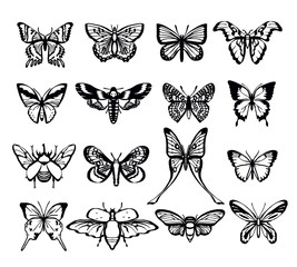 Butterflies vector black icon set