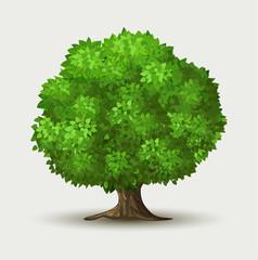 Green Tree.Vector
